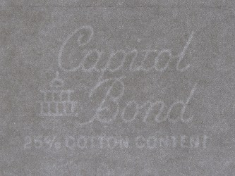 Capitol Bond watermark